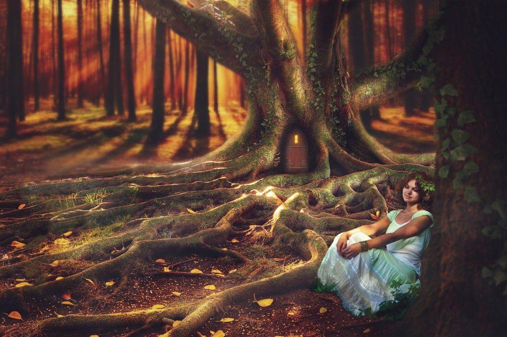 fantasy, forest, magic